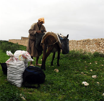 Man with donkey in a village