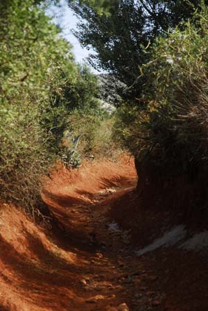 Oued path floods after rains