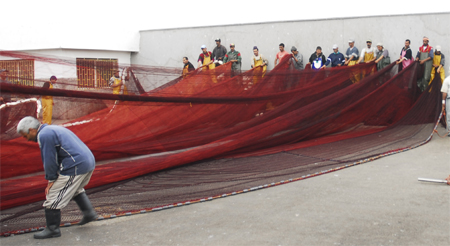Maintenance of the trawl