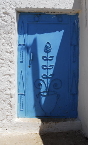 Ble painted steel door